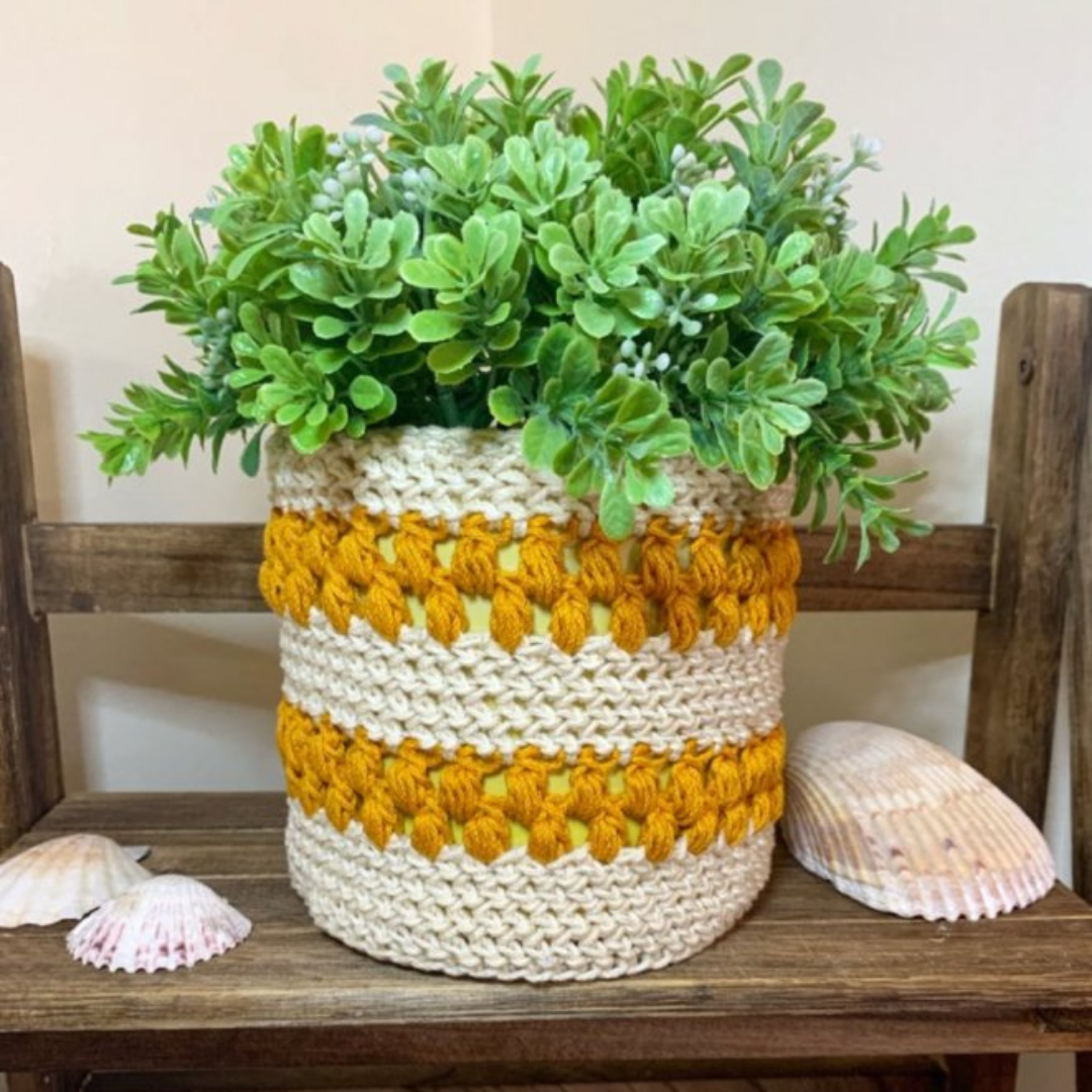 Read more about the article Crochet Plant Cozy Free Pattern